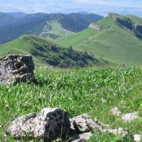 GA -- Borjomi-Kharagauli