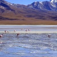 Bolivia -- Uyuni Salt Flats