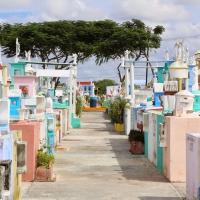 Mexico (Cementerio Xoclan)