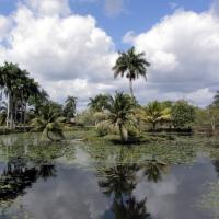 Peninsula de Zapata 2
