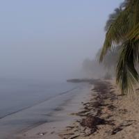 Peninsula de Zapata