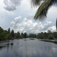 Brazil-Guama-Wetlands