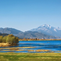 Lashihai-Lake-Wetlands