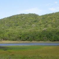 Cape Vidal - AR