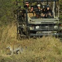 Leopard viewing Adam Riley