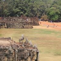 Elephant Terrace 8