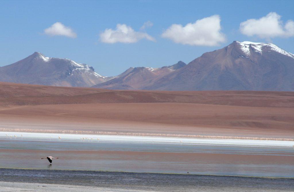 Bolivia -- Uyuni 3