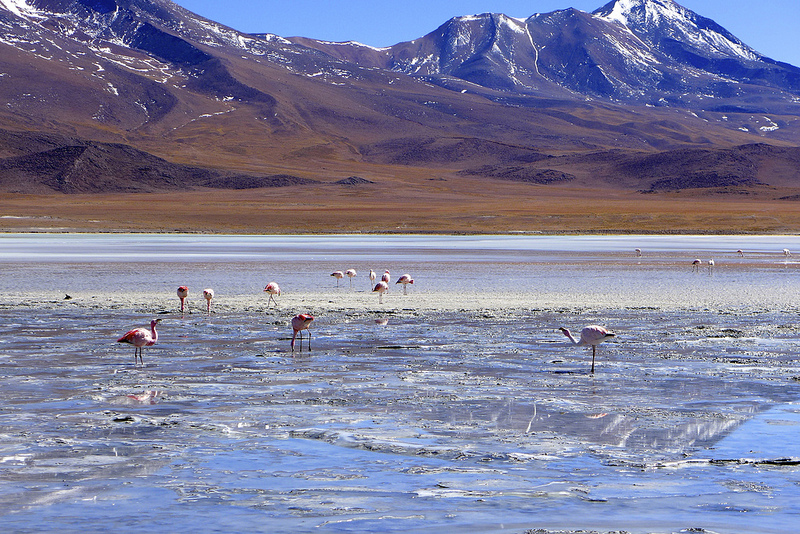 Bolivia -- Uyuni Salt Flats 2