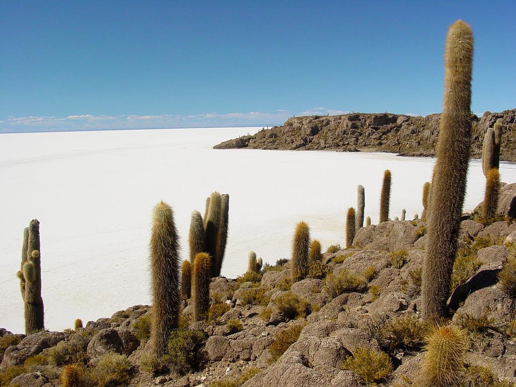 Bolivia tour