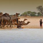 Chad Uncovered: The Ennedi Region & Zakouma National Park 2019