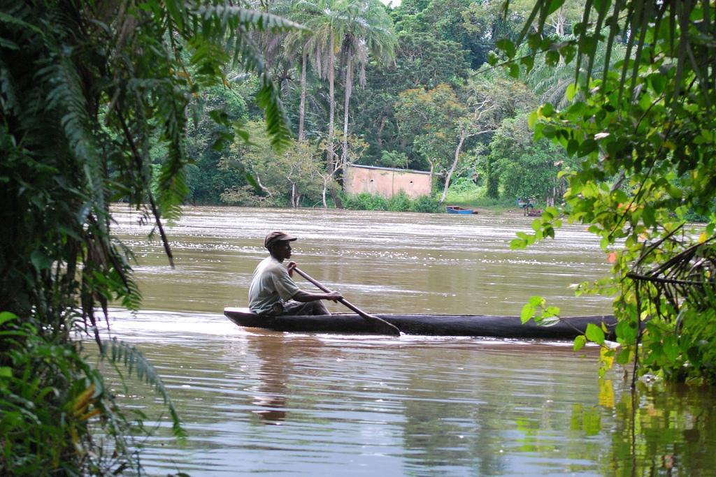 Sierra Leone -- Tiwai Island