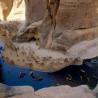 Chad & Cameroon: Ennedi Region, Zakouma NP & the Cameroonian Highlands