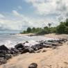 Liberia Uncovered 2019